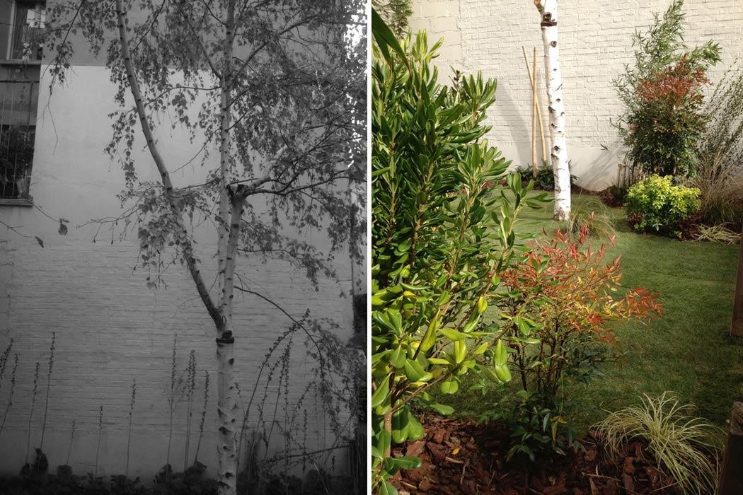 Am nagement d 39 un jardin bordeaux for Amenagement jardin bordeaux